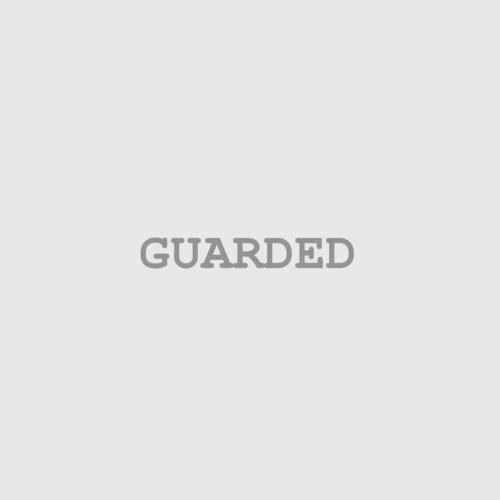 Inktober2018 13 Guarded
